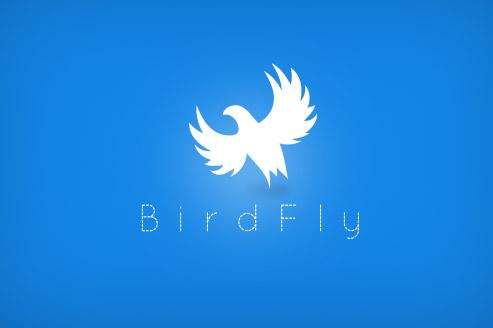 birdfly